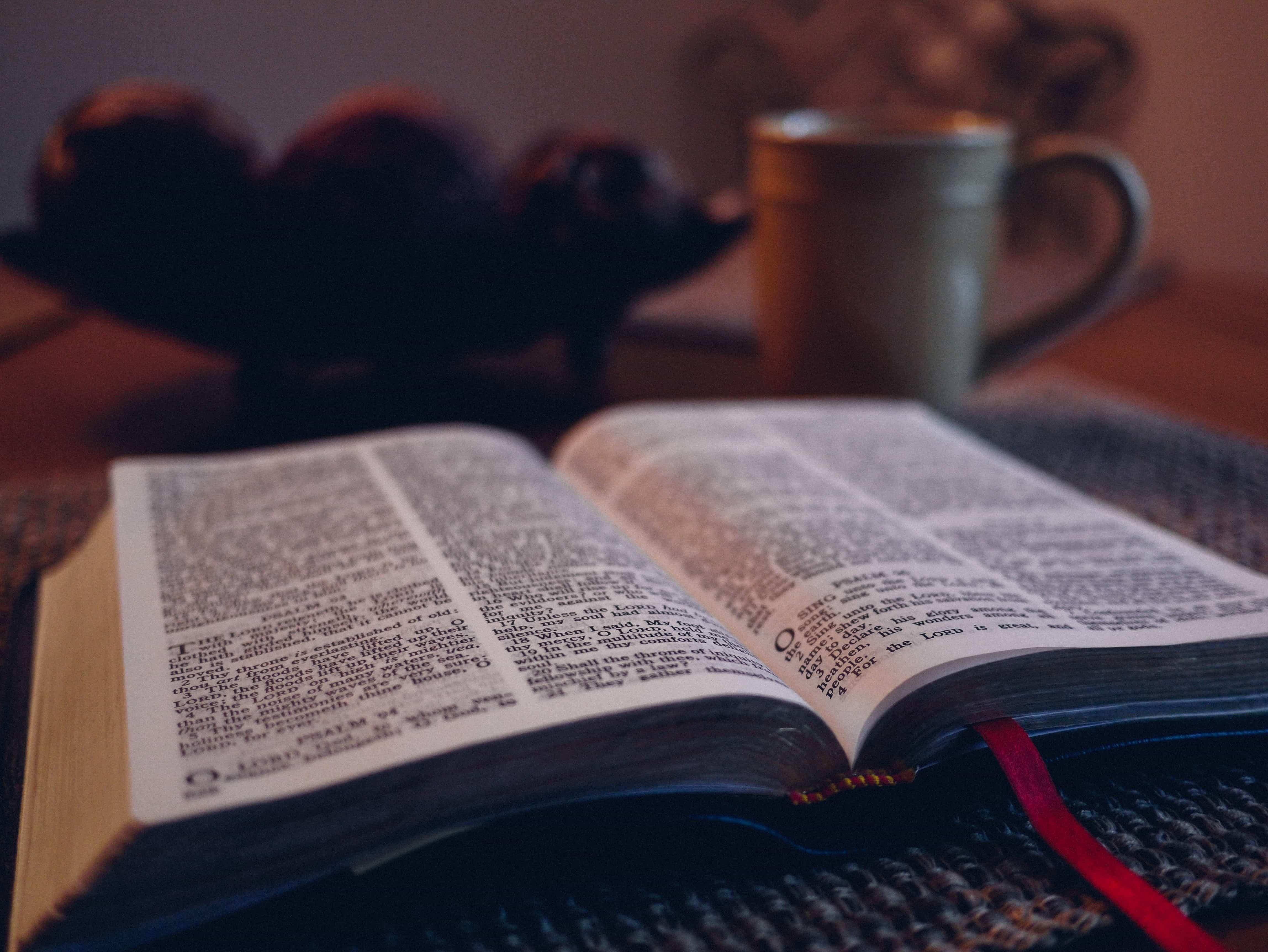 Salomon : la passion qui mène au chaos